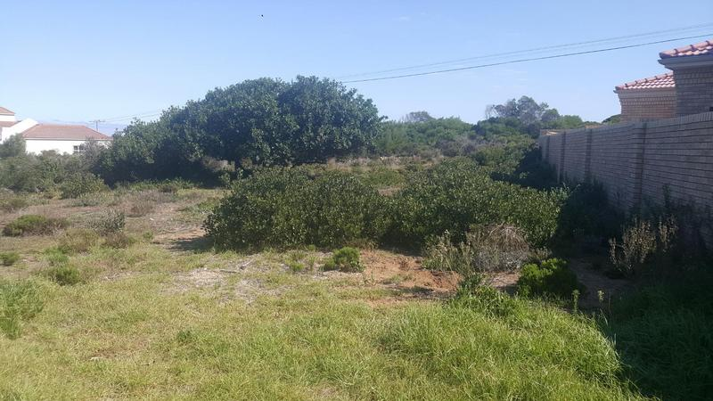Property For Sale in Jongensfontein, Stilbaai 3