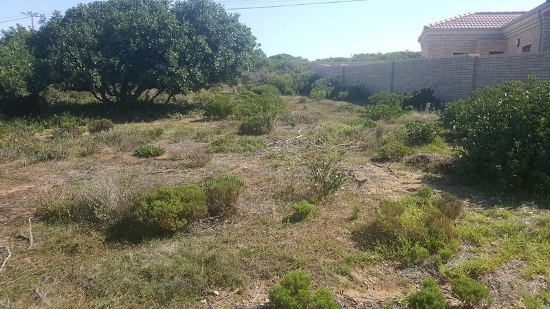 Property For Sale in Jongensfontein, Stilbaai 6