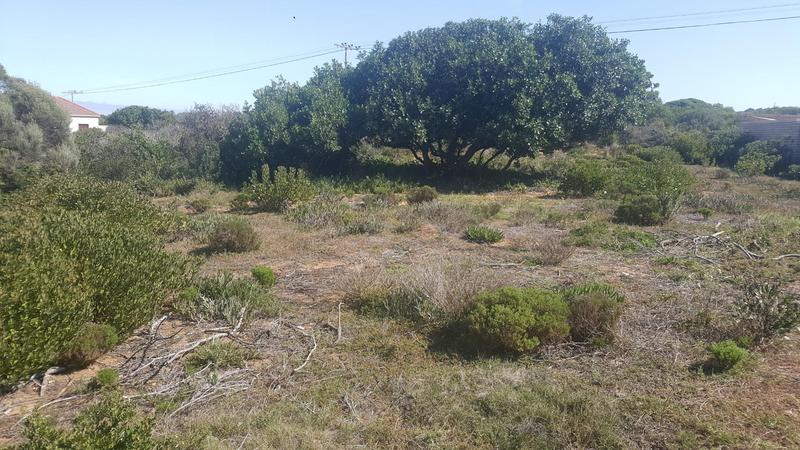 Property For Sale in Jongensfontein, Stilbaai 7