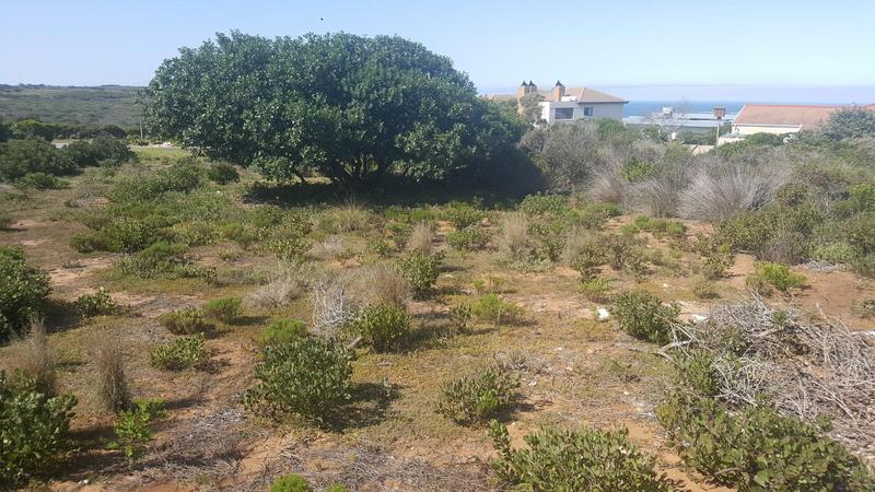 Property For Sale in Jongensfontein, Stilbaai 14